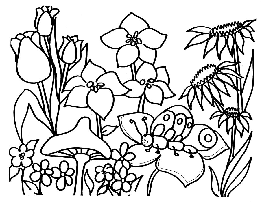 flower jardin dessins à colorier flower dessin à colorier