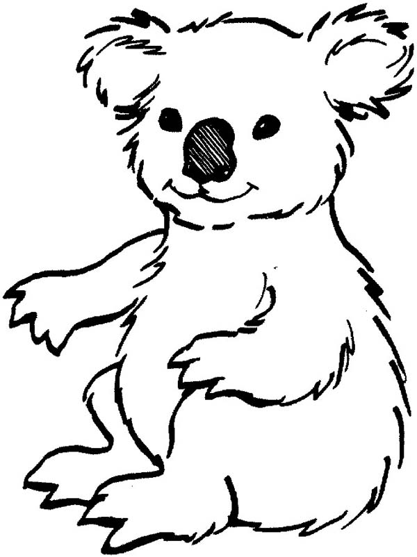 Dessin gratuit koala à imprimer