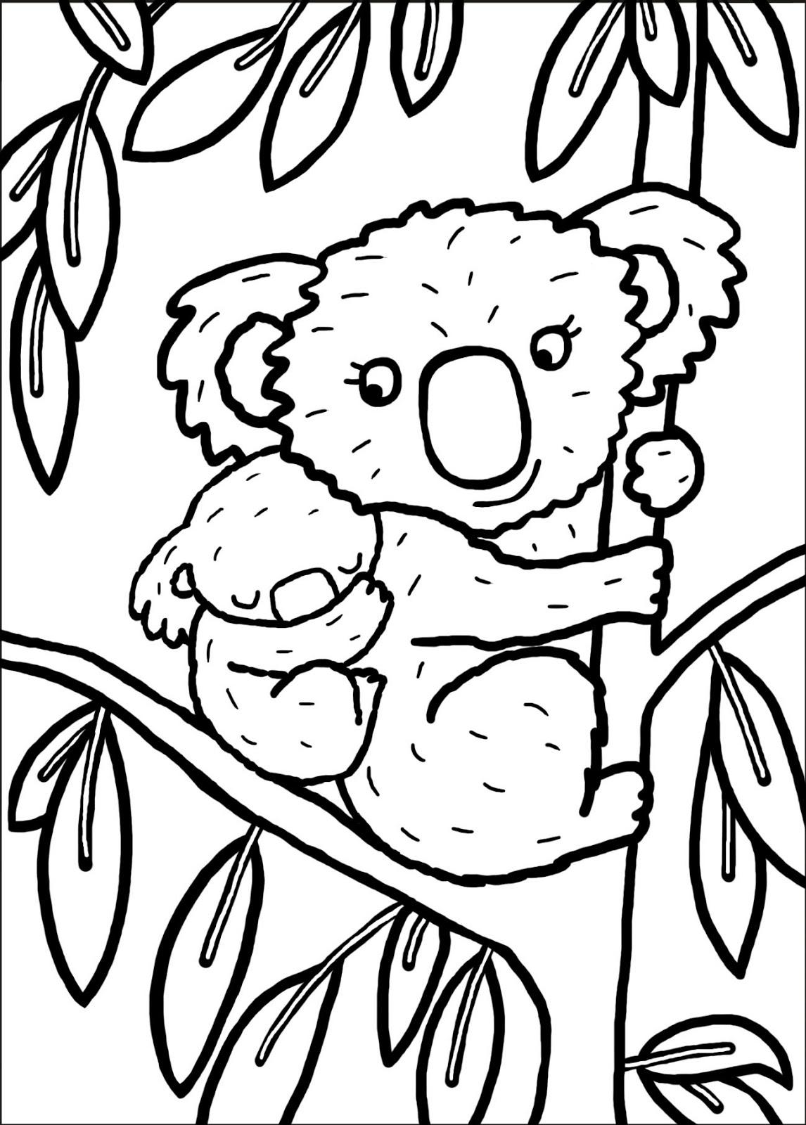 Coloriage de koala imprimer et colorier