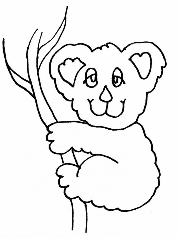 Dessin de koala à imprimer