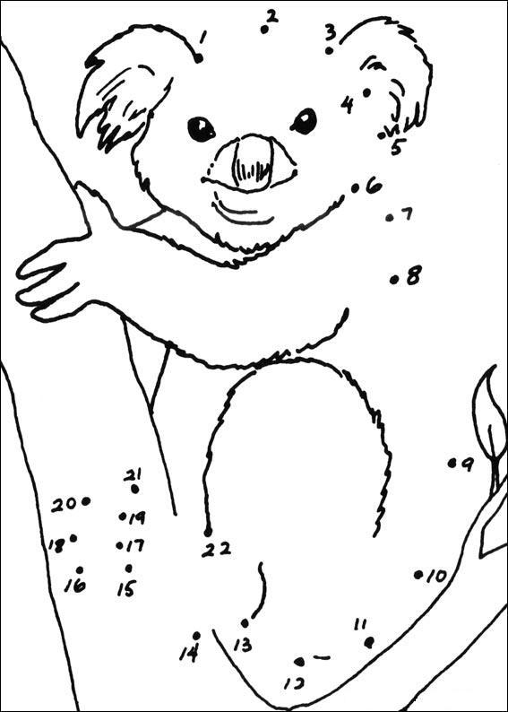 Dessin gratuit de koala à imprimer