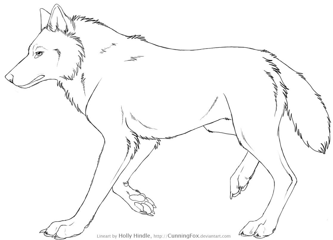 how to draw a wolf head from the side