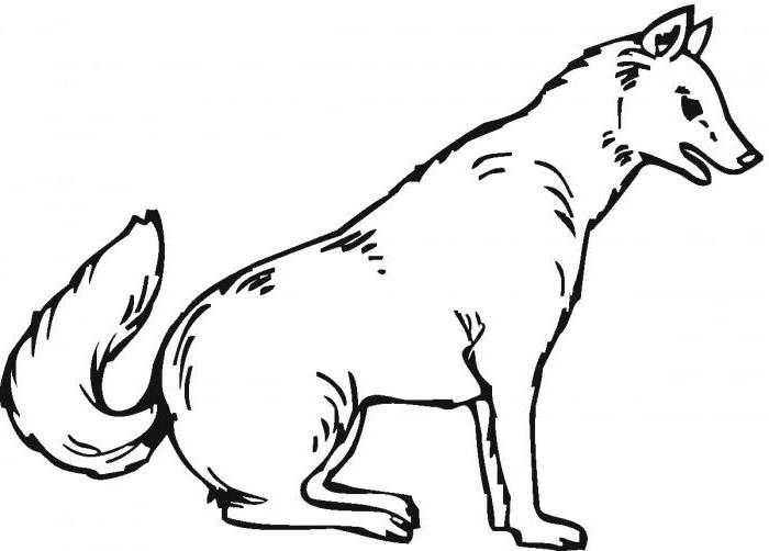 S lection de coloriage loup imprimer sur - Image loup dessin ...