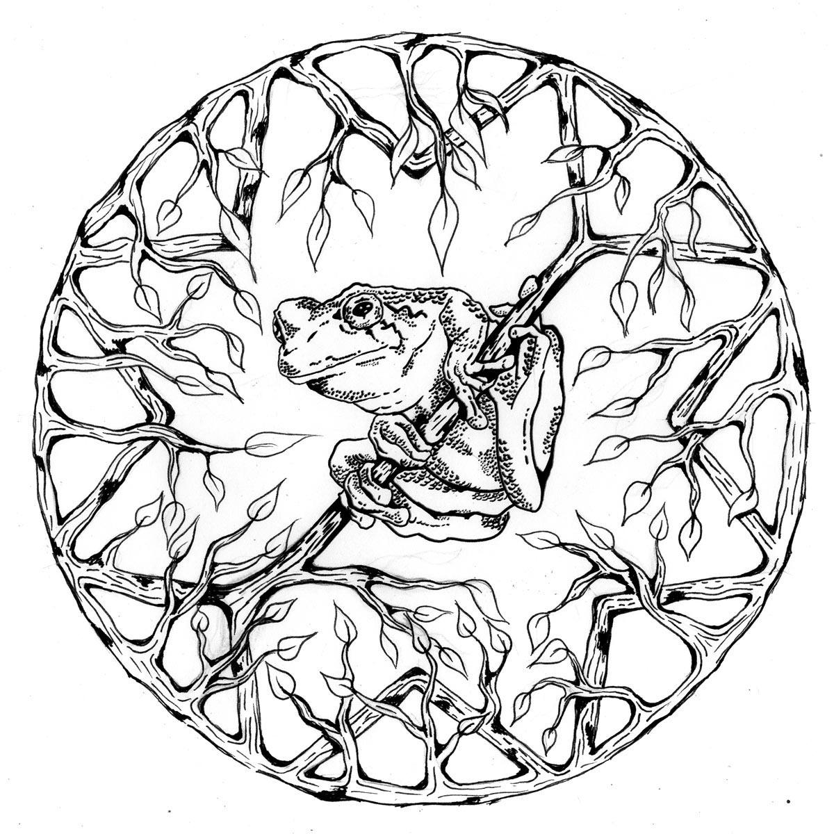 64 dessins de coloriage mandalas animaux imprimer sur
