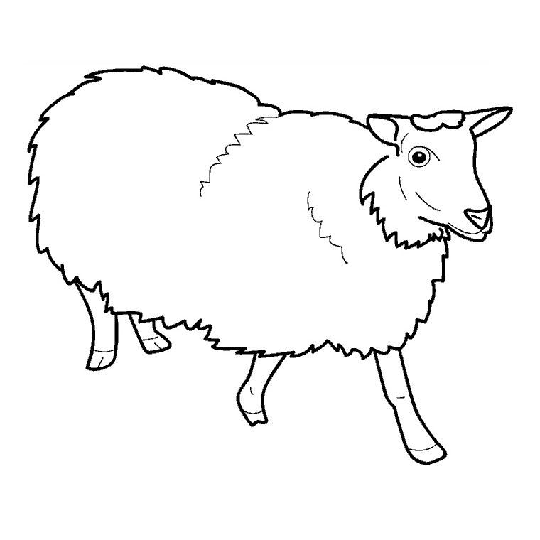 Sélection de coloriage mouton à imprimer sur LaGuerche.com ...