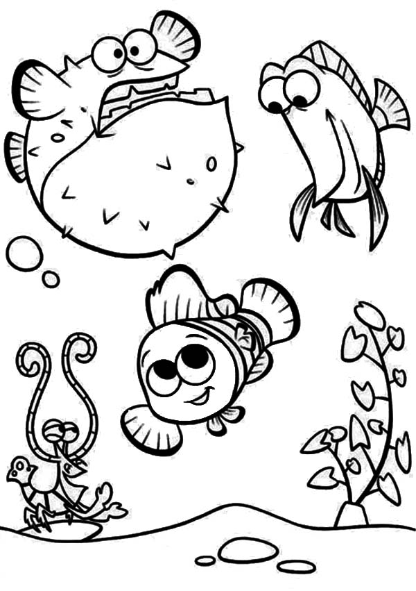 Baby puffer fish coloring pages coloring pages for Baby fish coloring pages
