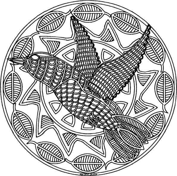 119 dessins de coloriage oiseau imprimer sur laguerche - Imprimer des mandalas gratuit ...
