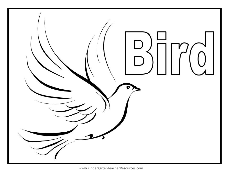 119 Dessins De Coloriage Oiseau 224 Imprimer Sur Laguerche Com Page 2