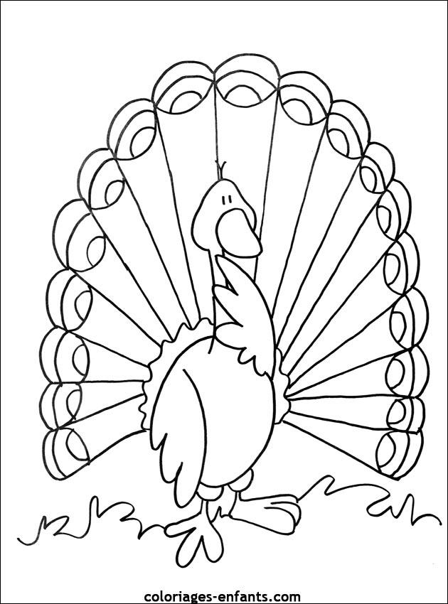 Coloriage oiseau gratuit