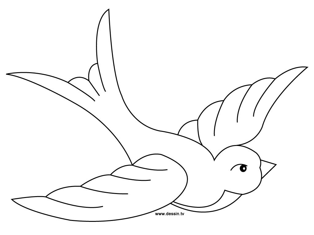 Image de oiseau a colorier