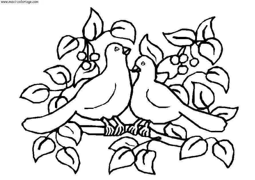 Coloriage oiseau a imprimer