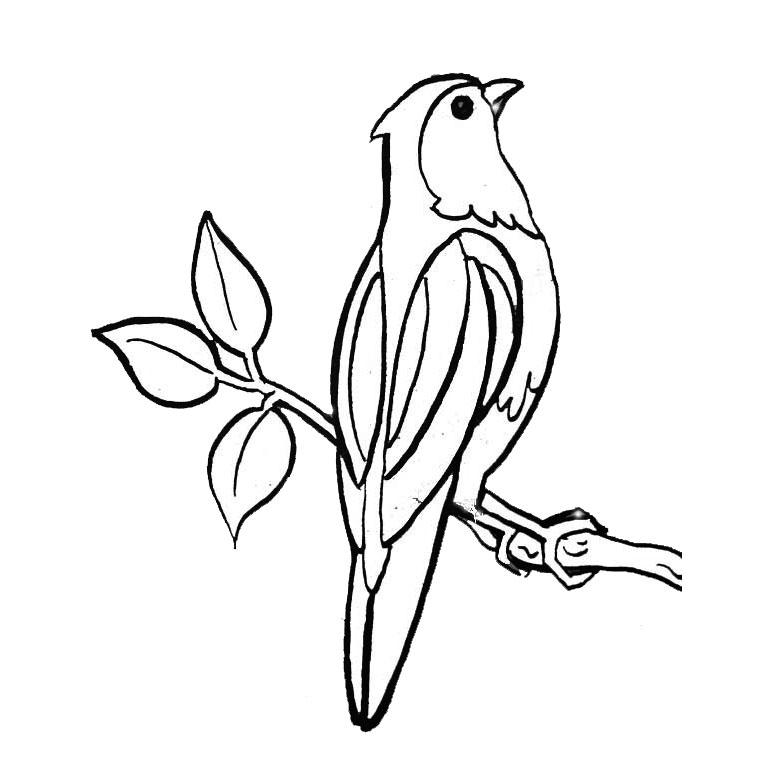 Activité de coloriage oiseau a colorier
