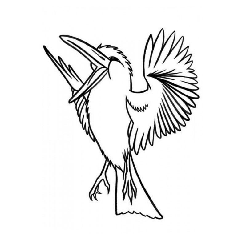 Image de oiseau a dessiner