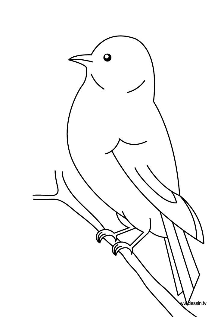 119 dessins de coloriage oiseau imprimer sur laguerche - Coloriage image ...