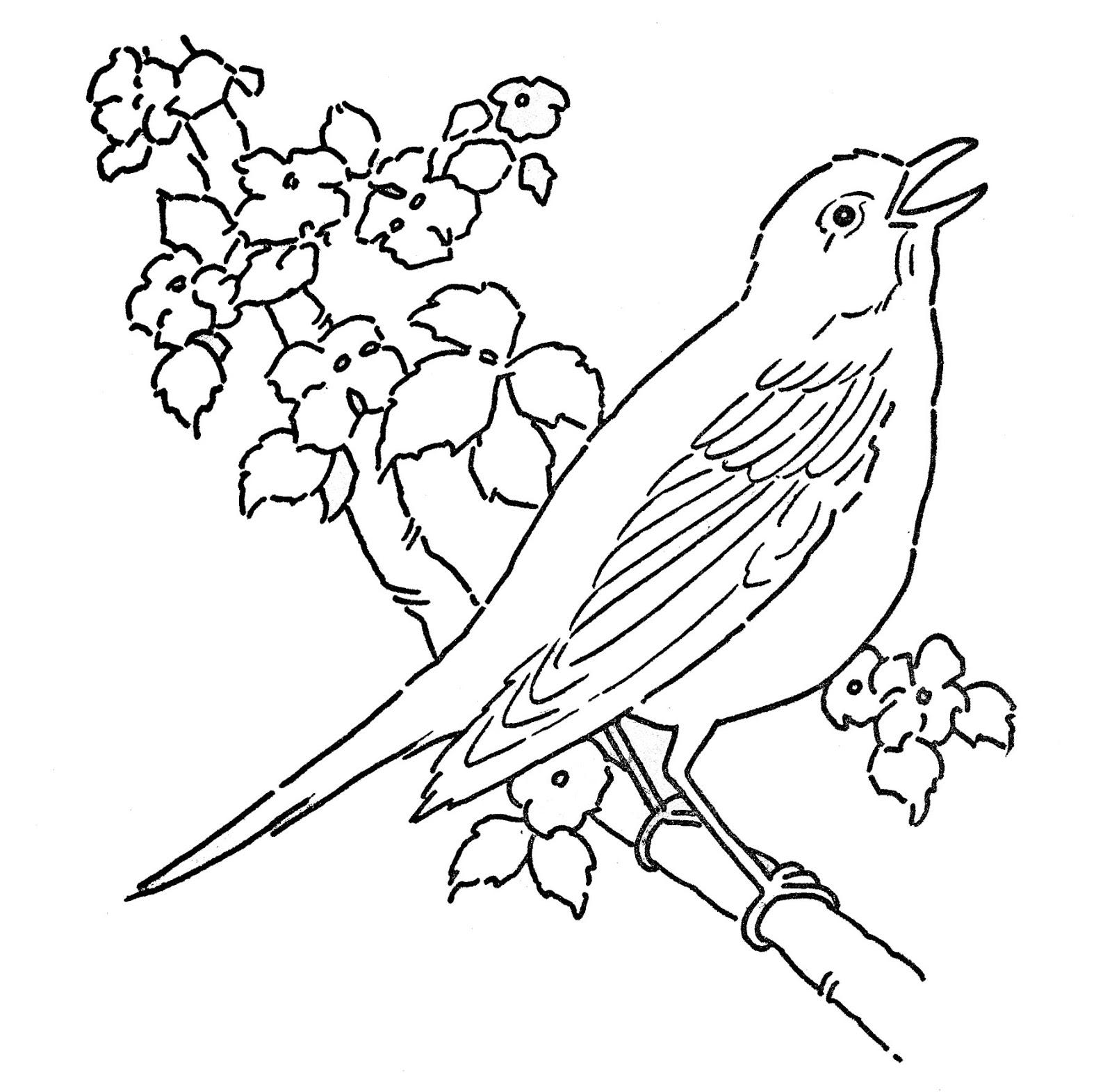 Dessin de oiseau imprimer et colorier