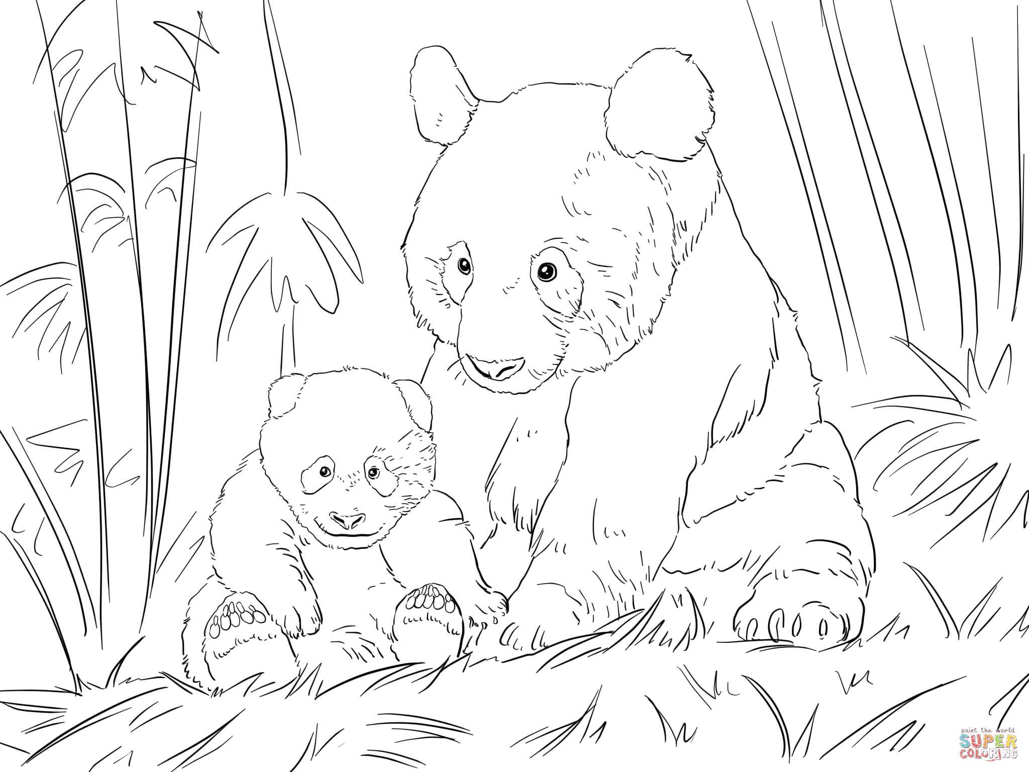 s lection de coloriage pandas imprimer sur page 2. Black Bedroom Furniture Sets. Home Design Ideas