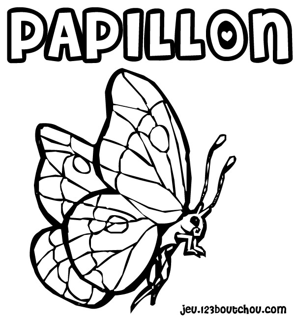Dessin de papillon