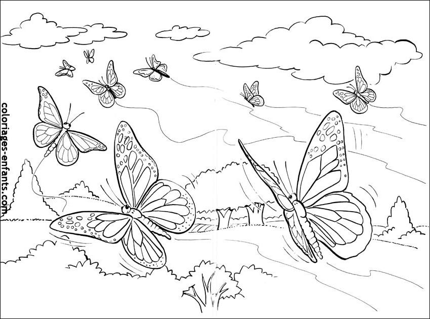 dessin de papillon pour imprimer et colorier