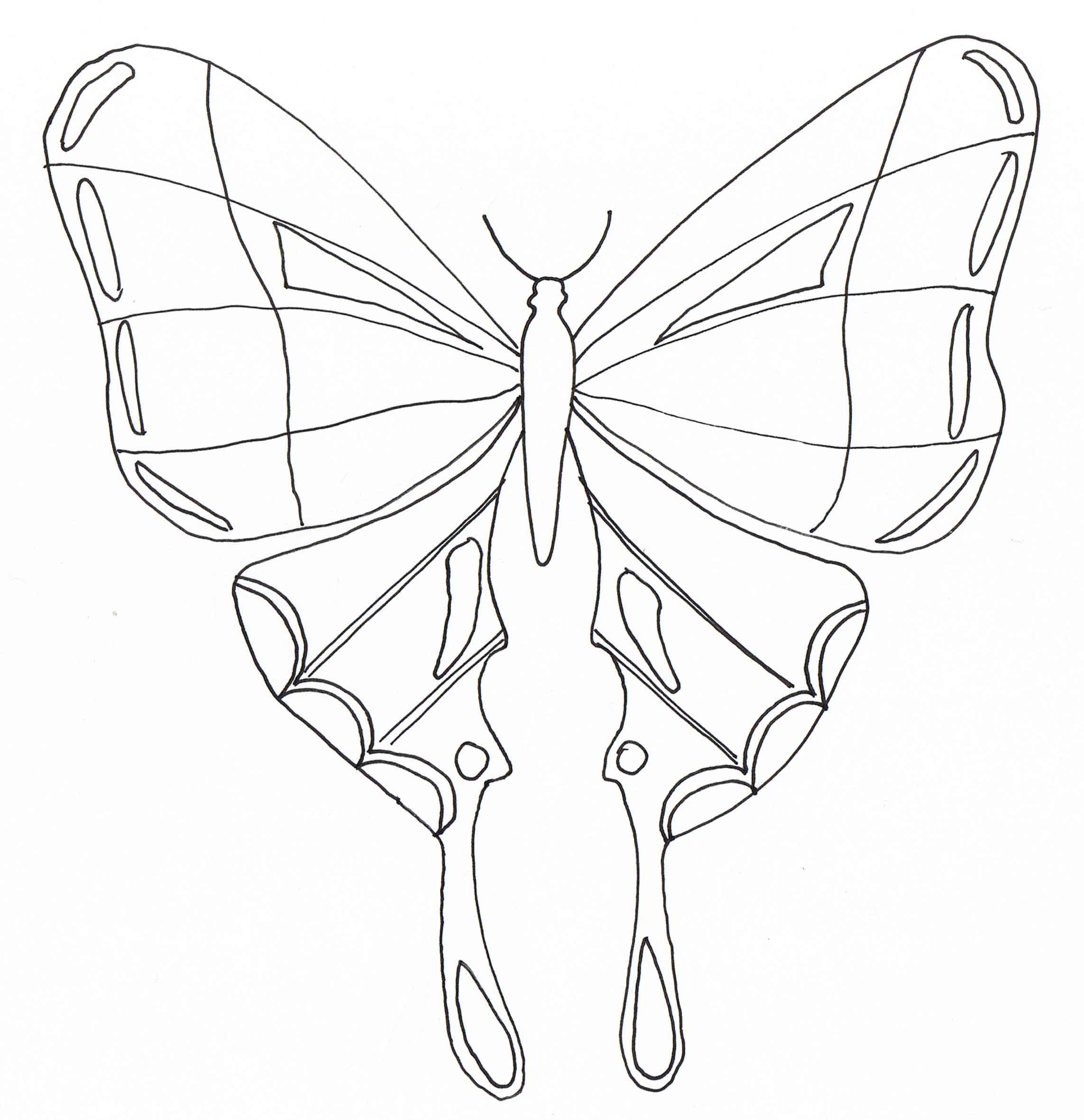 Meilleur De Image à Colorier De Papillon