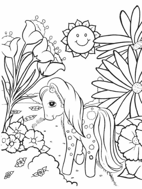image 26069 coloriage petit poney gratuit