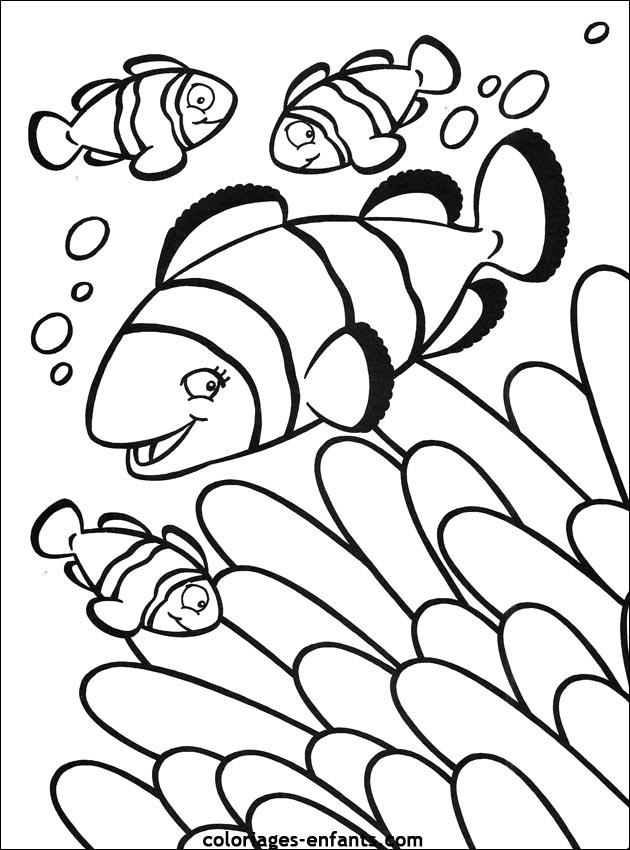 Coloriage de poisson gratuit à imprimer et colorier