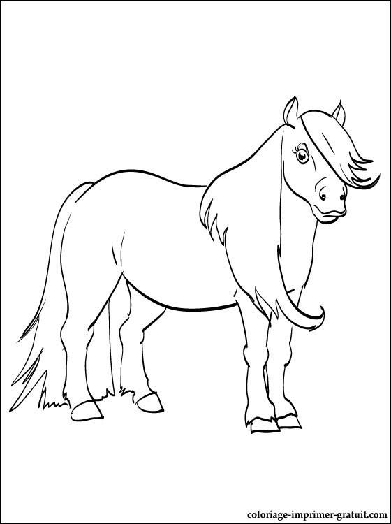 Paarden Kleurplaten Tinker 149 Dessins De Coloriage Poney 224 Imprimer Sur Laguerche