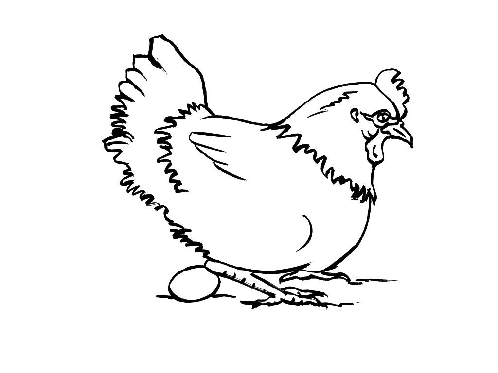 S lection de coloriage poule imprimer sur page 2 - A quelle age pond une poule ...