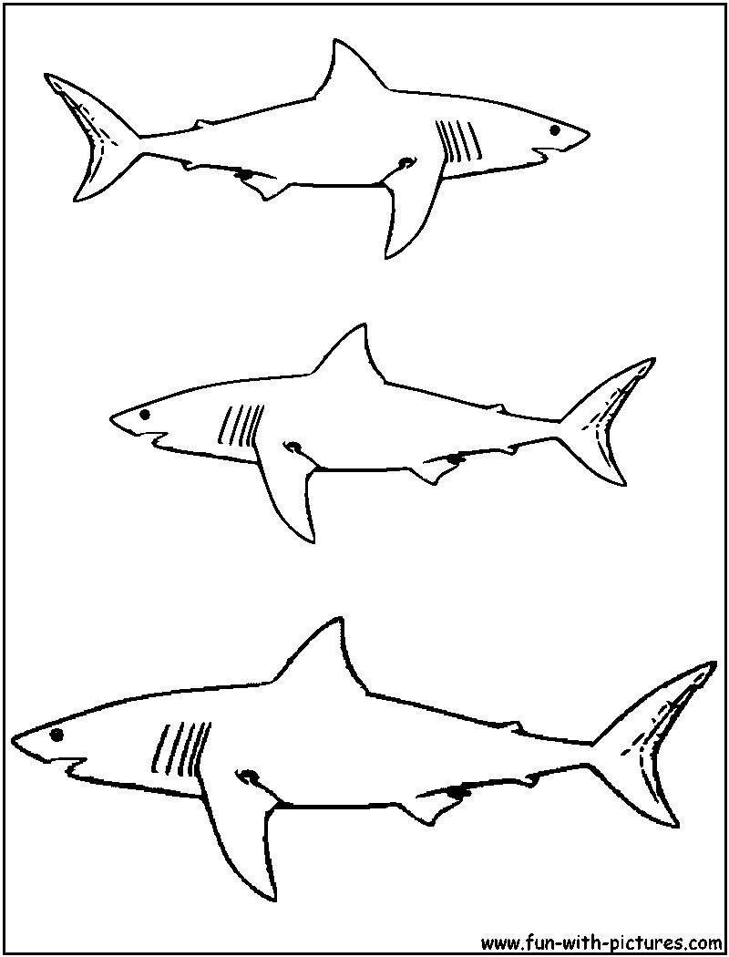 Sélection de coloriage requin à imprimer sur LaGuerche.com ...