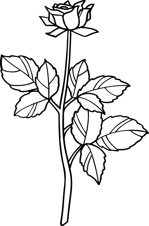 Top 57 dessins de coloriage roses à imprimer sur LaGuerche.com - Page 3 PG57