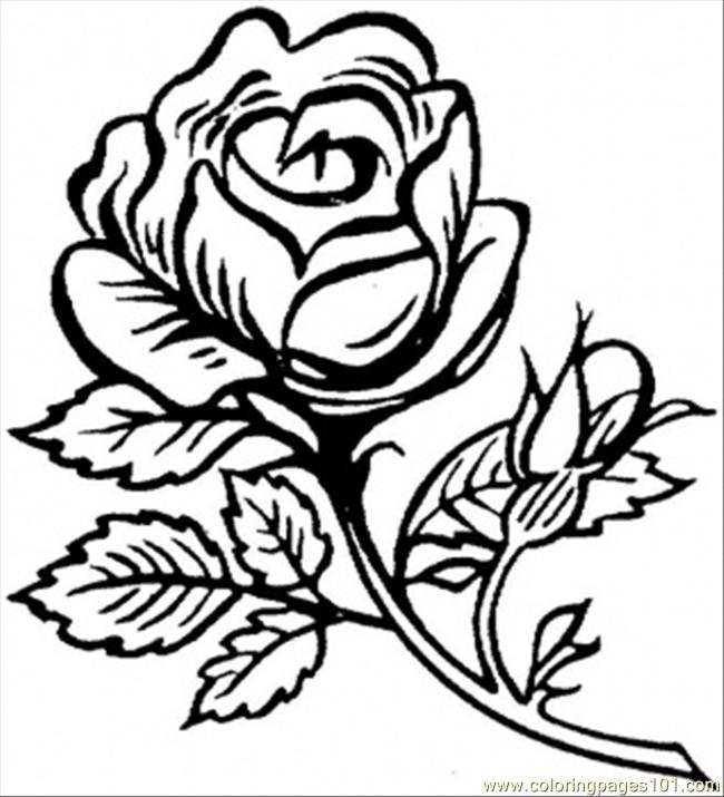imprimer dessin colorier beautiful big rose hello coloriage - Dessin De Rose A Imprimer