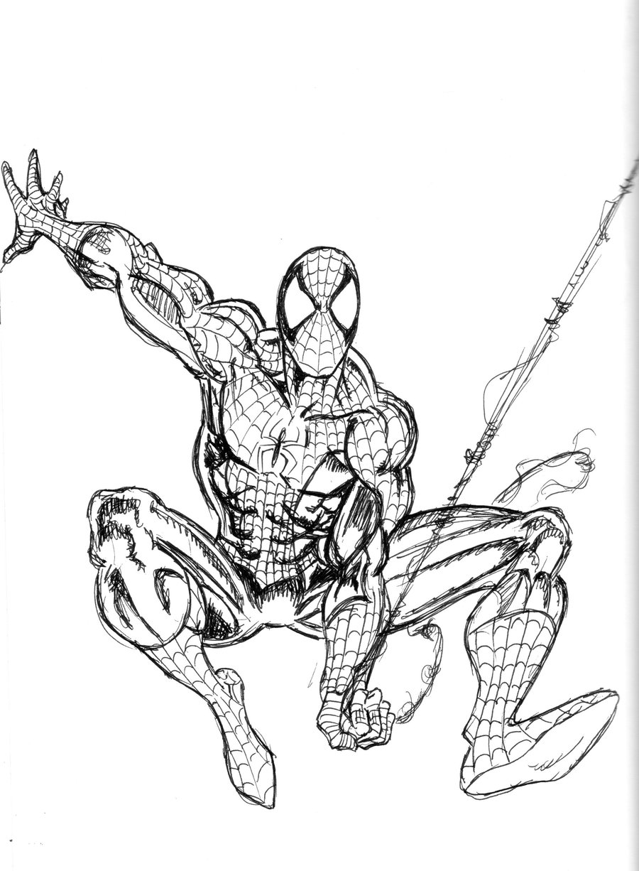 phoà dessineriage spiderman : image gratuite coloriage spiderman