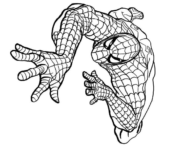 167 dessins de coloriage spiderman imprimer sur page 6 - Coloriage spiderman 1 ...
