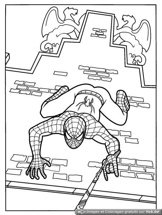 coloriage spiderman grimpe aux murs dans la catégorie spiderman