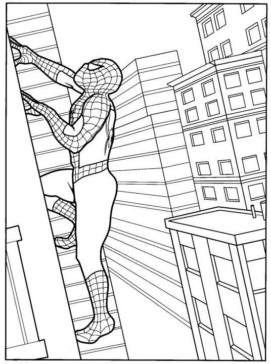 coloriage spiderman grimpe