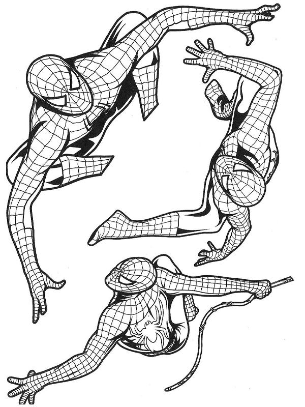 coloriage spiderman dans plusieurs postures