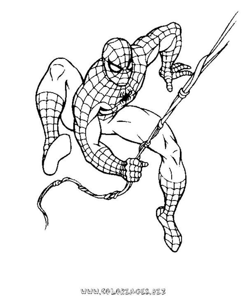 167 dessins de coloriage spiderman imprimer sur page 15 - Coloriage spiderman imprimer ...
