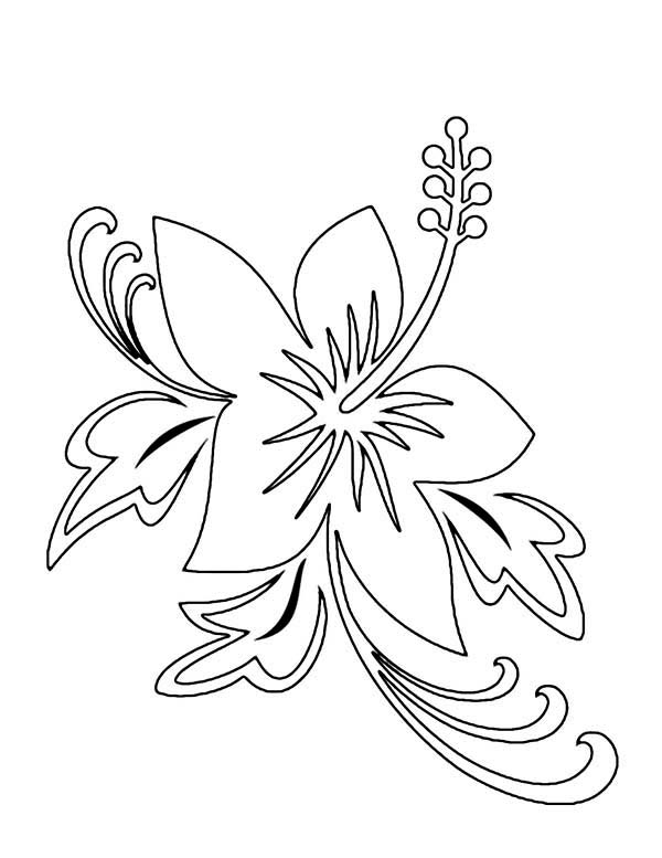 Tropical Flower Line Drawing : Dessins de coloriage tatouage à imprimer sur laguerche