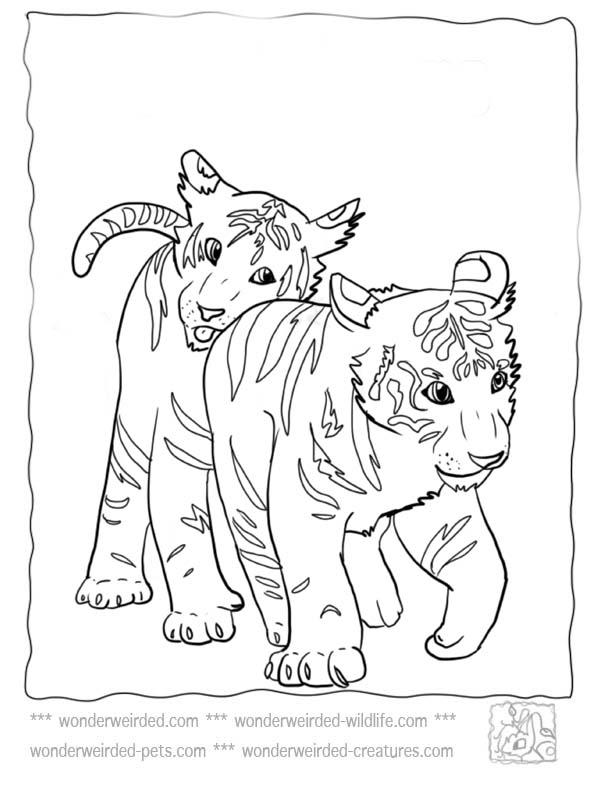 72 dessins de coloriage tigre imprimer sur page 2