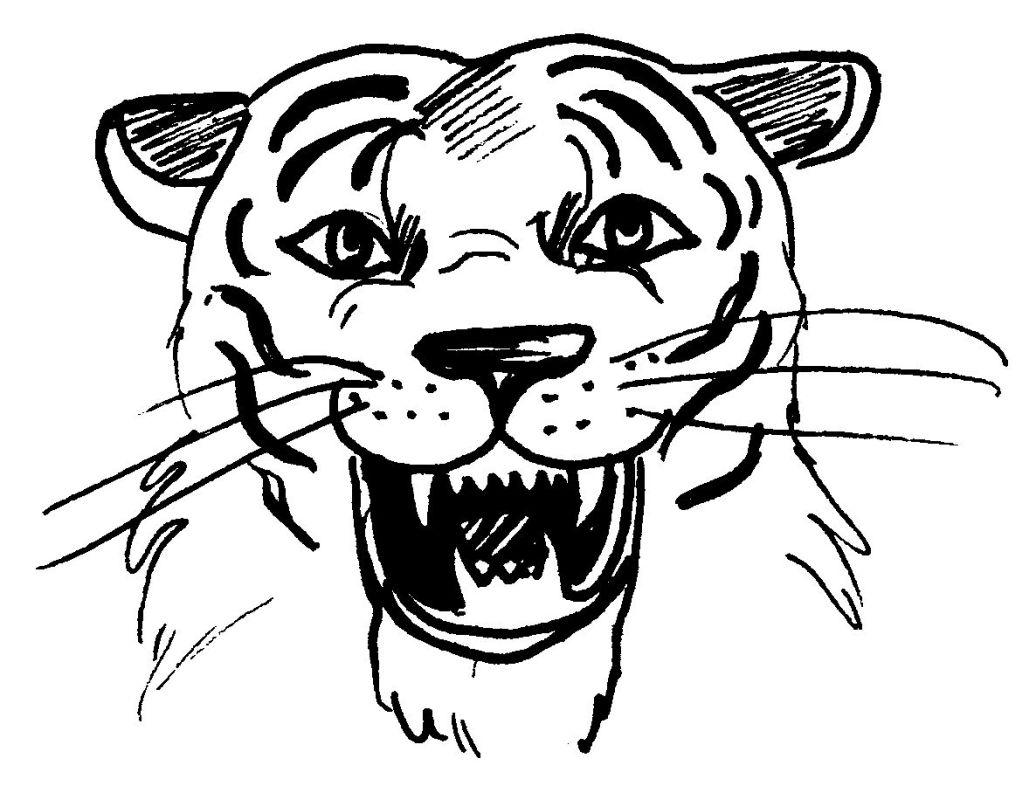 Coloriage de tete de tigre - Image dessin tigre ...