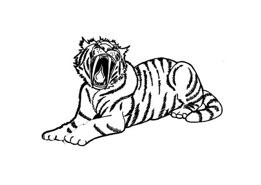 72 dessins de coloriage tigre imprimer sur page 5 - Dessin de sabre ...