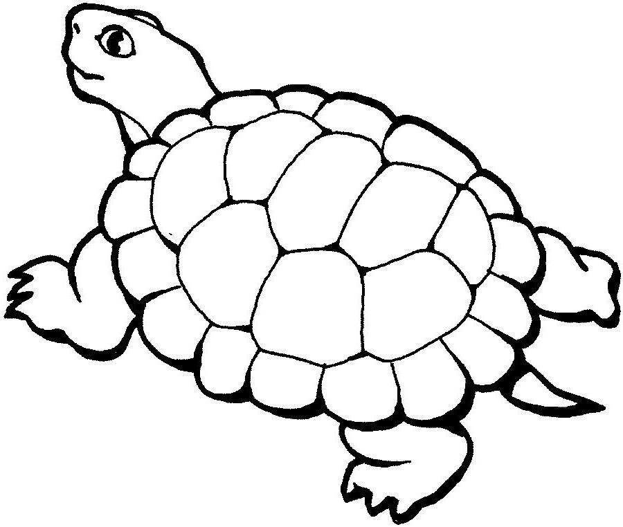 Dessin De Tortue 69 dessins de coloriage tortue à imprimer sur laguerche - page 1