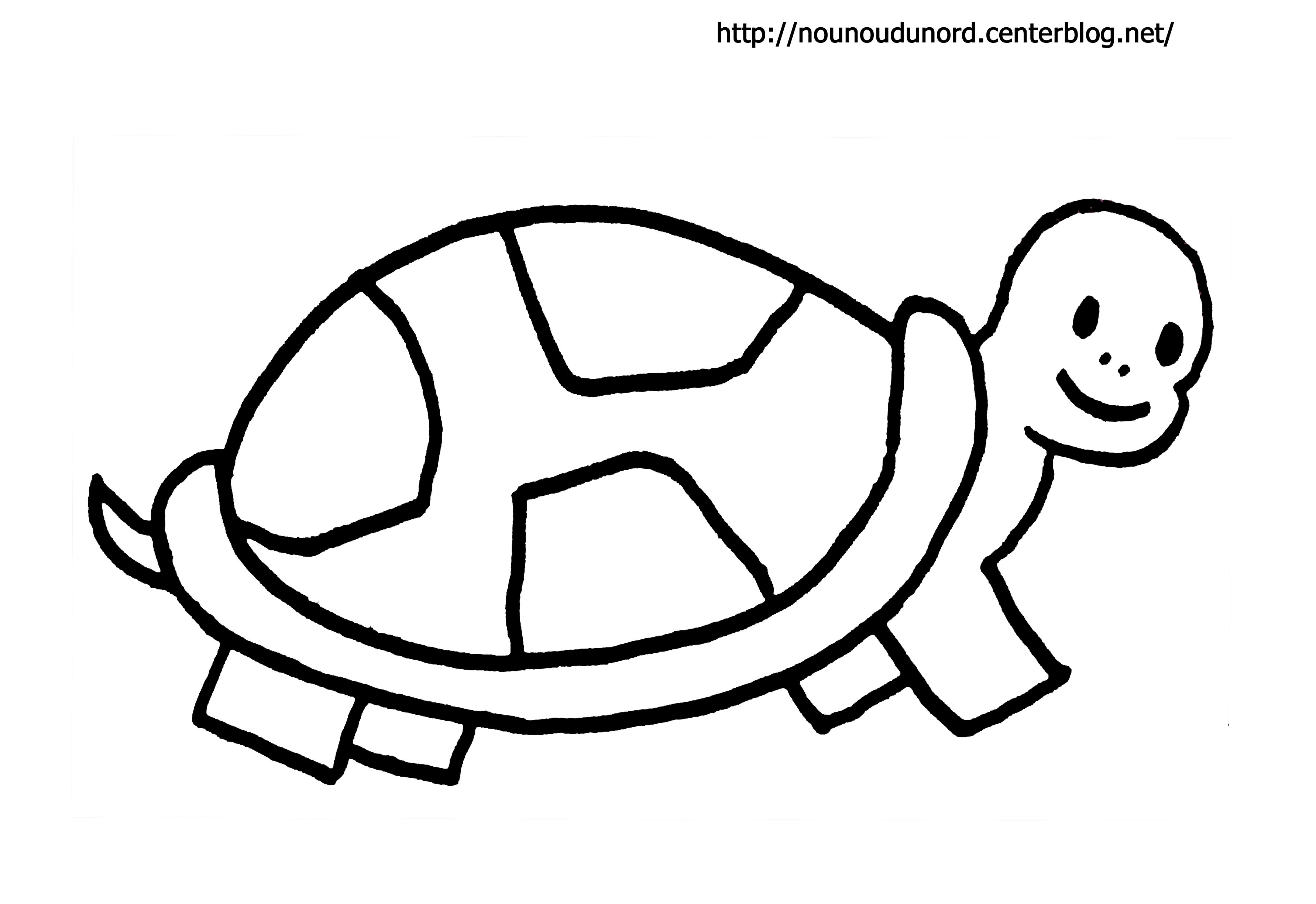 69 dessins de coloriage tortue imprimer sur page 3 - Tortue en dessin ...