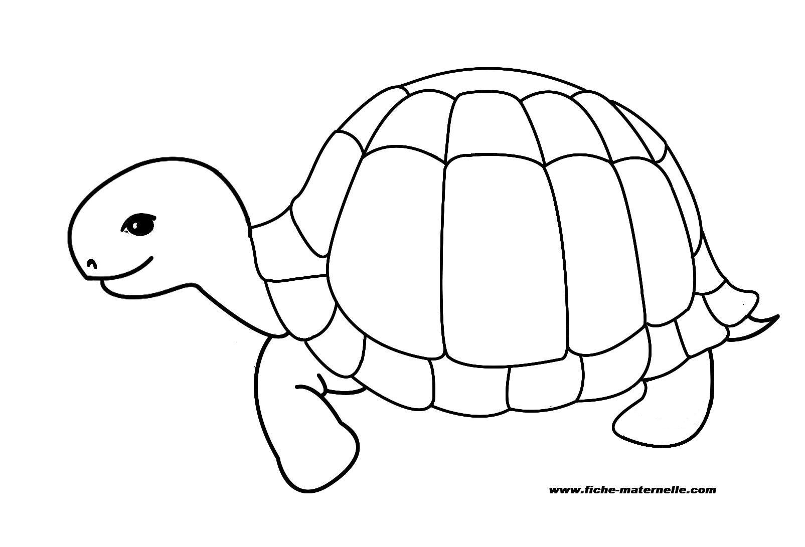 69 dessins de coloriage tortue imprimer sur laguerche - Tortue dessin ...