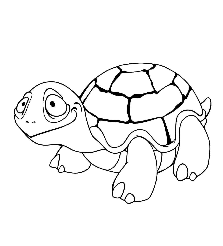 69 dessins de coloriage tortue imprimer sur page 7 - Dessin d une tortue ...