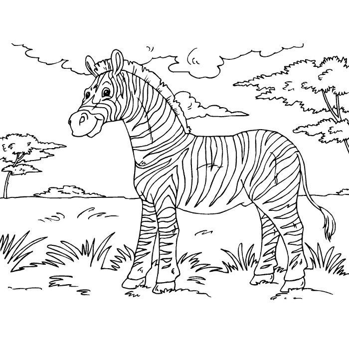 S lection de coloriage z bre imprimer sur - La savane dessin ...