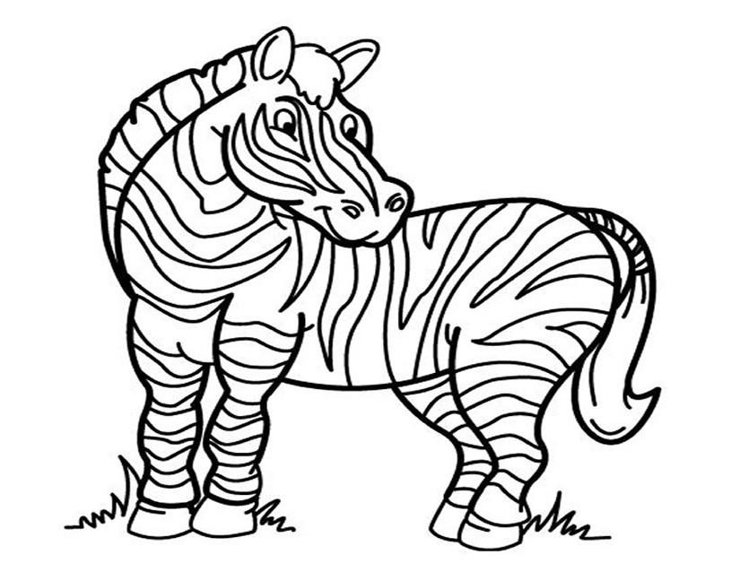 S lection de coloriage z bre imprimer sur - Coloriage zebre ...