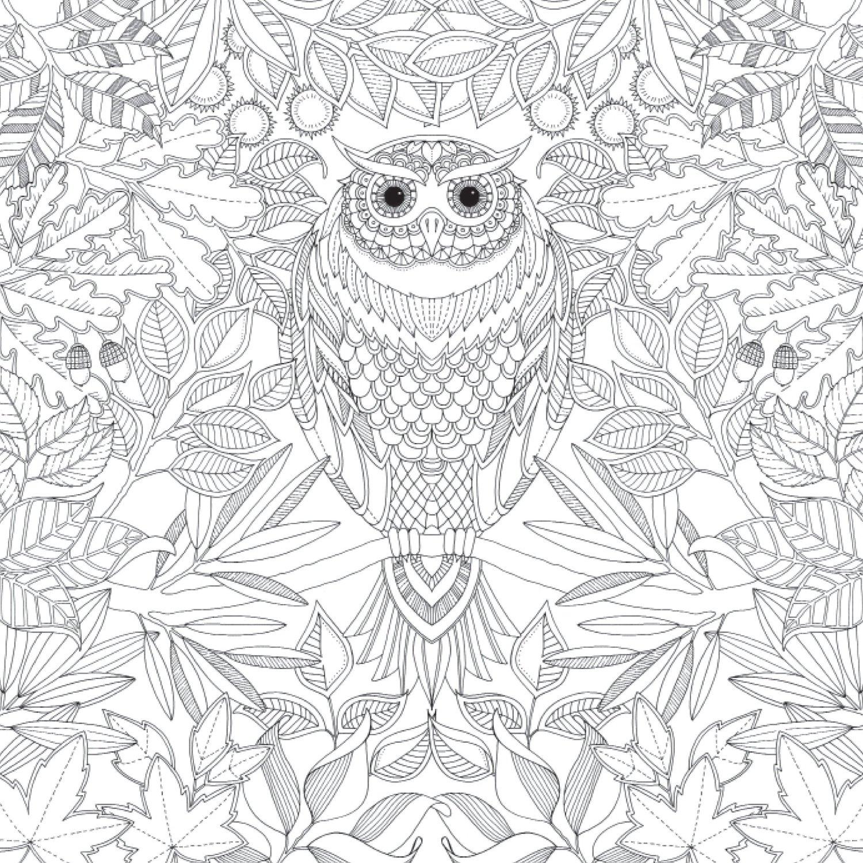 Bien-aimé 59 dessins de coloriage difficile à imprimer sur LaGuerche.com  OS86