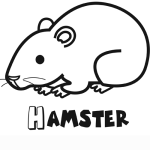 Animaux-Hamster-3405.png